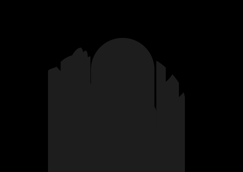 Racoon Graphic Studio